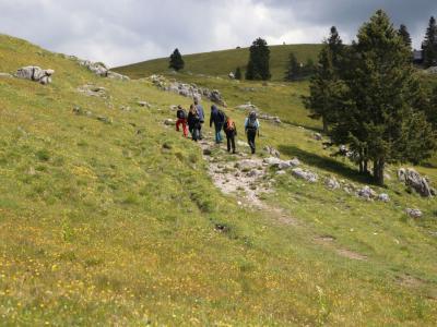 V slovenskih planinskih kočah letos beležijo manjši obisk, je pa med planinci več domačih, tujcev je le za vzorec. (Foto: Planinska zveza Slovenije)