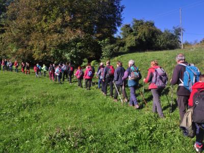 Pohodnike bo pot popeljala po visokodebelnih travniških sadovnjakih, ki so naravovarstveno med najpomembnejšimi habitati v Kozjanskem parku. (Foto: Kozjanski park)