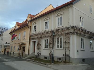 Med pogostejšimi postanki obiskovalcev v Šentjurju je bil Zgornji trg. (Foto: Štajerski val)