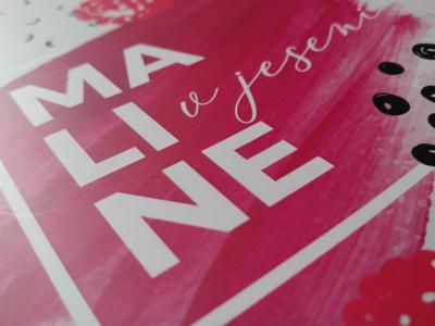 Ilustracije zbirke Maline v jeseni pa so delo Neje Reich in Teje Kobule, prav tako dijakinj Šolskega centra Rogaška Slatina. (Zbirka ŠC Rogaška Slatina, foto: Štajerski val)