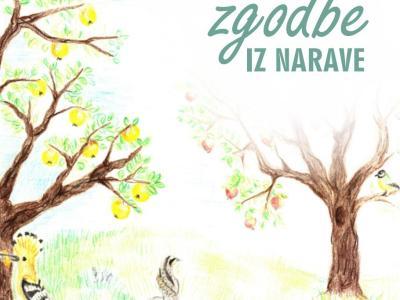 Naslovnico knjižice krasi ilustracija Klare Šegon, sedmošolke OŠ Lesično. (Foto: Kozjanski park)