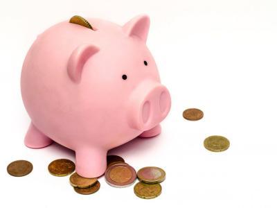 Kako pa vi varčujete? S pomočjo prašička? (Foto: Pixabay)