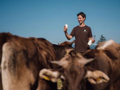 Mlekarna Celeia je besedah Petra Apata prva v Sloveniji, ki odkupuje seneno mleko in ga predeluje v seneni sir. (Foto: Mlekarna Celeia)