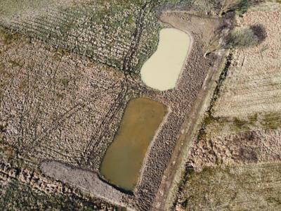 Kozjanski park je v Jovsih uredil 3 mlake, vsako v velikosti približno 250 m2. (Foto: Dušan Klenovšek)
