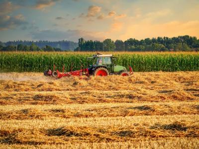 Kdo bo dobil naziv inovativni kmet ali kmetica leta 2021, bo znano 22. oktobra. (Foto: Pixabay)