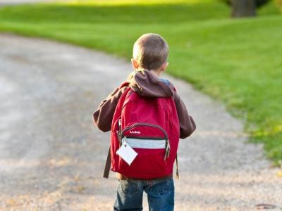 Na poti v šolo se lahko zgodi marsikaj zanimivega, pravijo na vitanjski osnovni šoli. (Fotografija je simbolična. Foto: Pixabay)