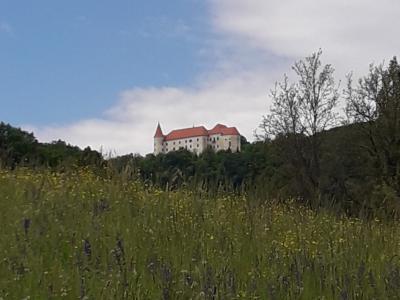 Pogled na Bizeljski grad. (Foto: Mirela Kunst)