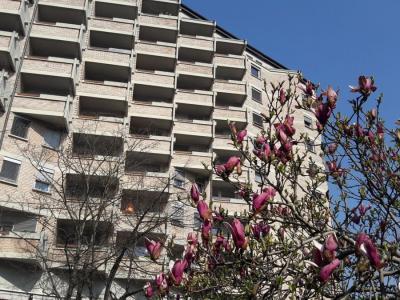 Večina sob ima balkone, nekatere celo terase, zato stanovalce v domu spodbujajo, da jih izkoristijo in so na svežem zraku. (Foto: Radio Štajerski val)