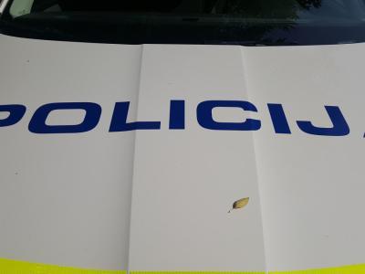 Policisti so imeli včeraj poleg omenjenih nasilnih dejanj kar nekaj dela tudi z obravnavo nekaj prometnih nesreč. V eni se je lažje poškodovala peška. (Foto: Štajerski val)