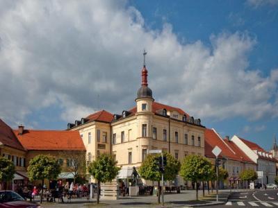 Občina Slovenska Bistrica praznuje 12. marca, na Gregorjevo. (Foto: Občina Slovenska Bistrica)