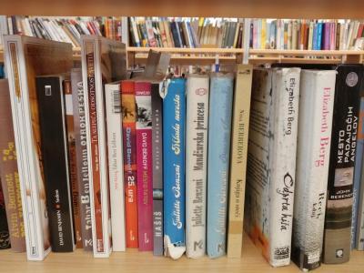 Knjige skrbno izberejo, pravi direktorica žalske knjižnice Jolanda Železnik. Letos se z njimi spominjajo več obletnic in dogodkov. (Fotografija je simbolična. Foto: Štajerski val)