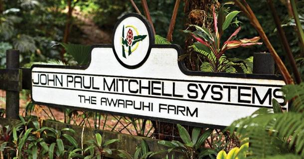 Kako je havajski ingver AWAPUHI prišel v izdelke Paul Mitchell?